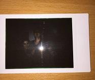 Lomo Instant Dunkel